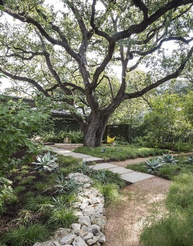 Low-Cost Luxury: 9 Ways to Use Decomposed Granite in a Landscape
