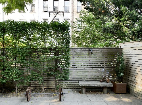 Garden Hacks: 10 Ideas for Privacy Screens
