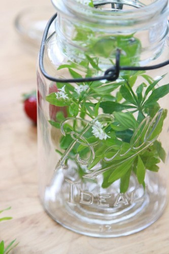 Herbal Essence: Just Add Water