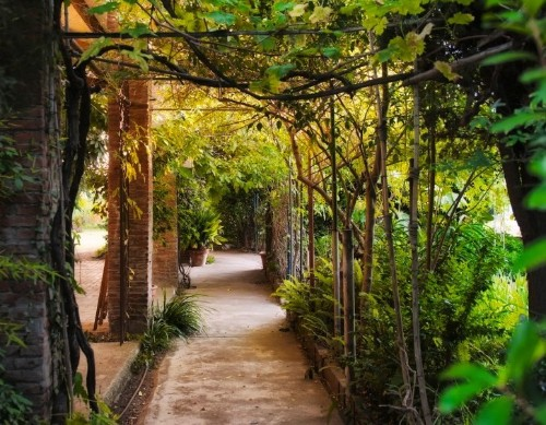 The Best Secret Garden in Barcelona
