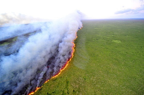 Aerial view of the Taim Ecological Station on fire, in Rio Grande do...
