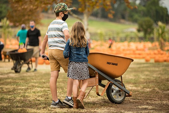 Little pumpkin shoppers at Bates Nut Farm