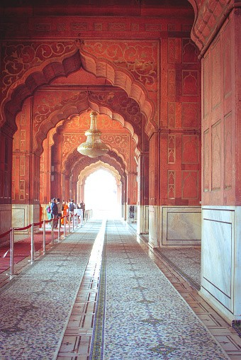The Jama Masjid of Delhi is one of the largest mosques in India.