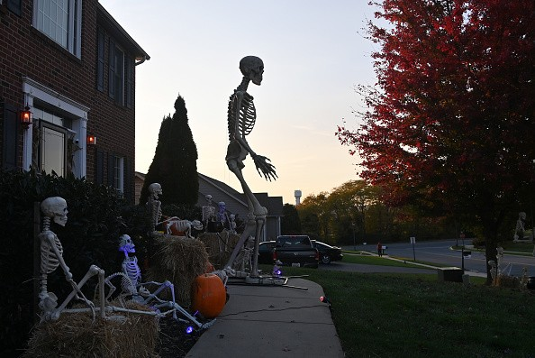 20 Herman the 12 foot tall skeleton stands quite tall amongst his...