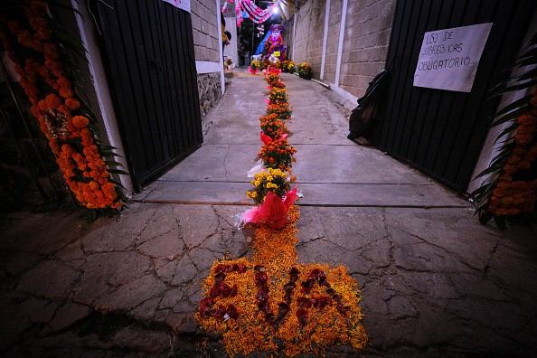 Marigold petals at the entrance to a house during a 'Day of the Dead'...