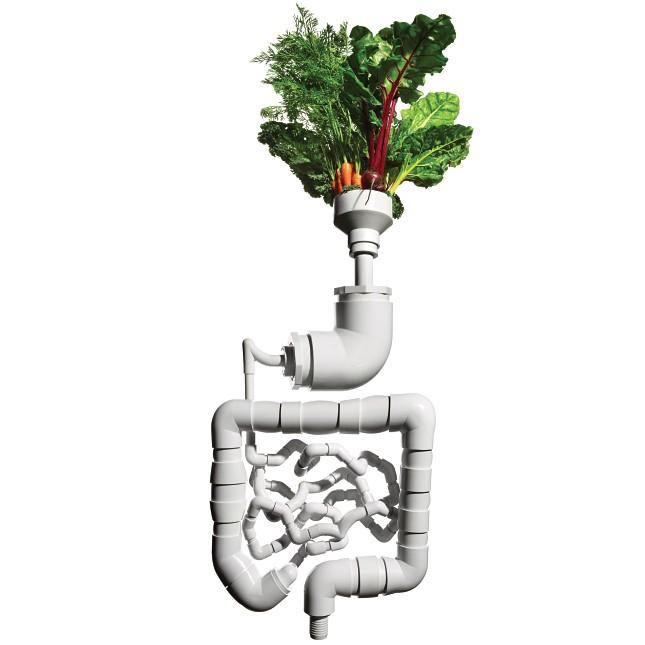 Здоровый образ жизни - Magazine cover