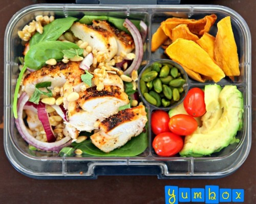 25 Healthy and Photo-Worthy Bento Box Lunch Ideas