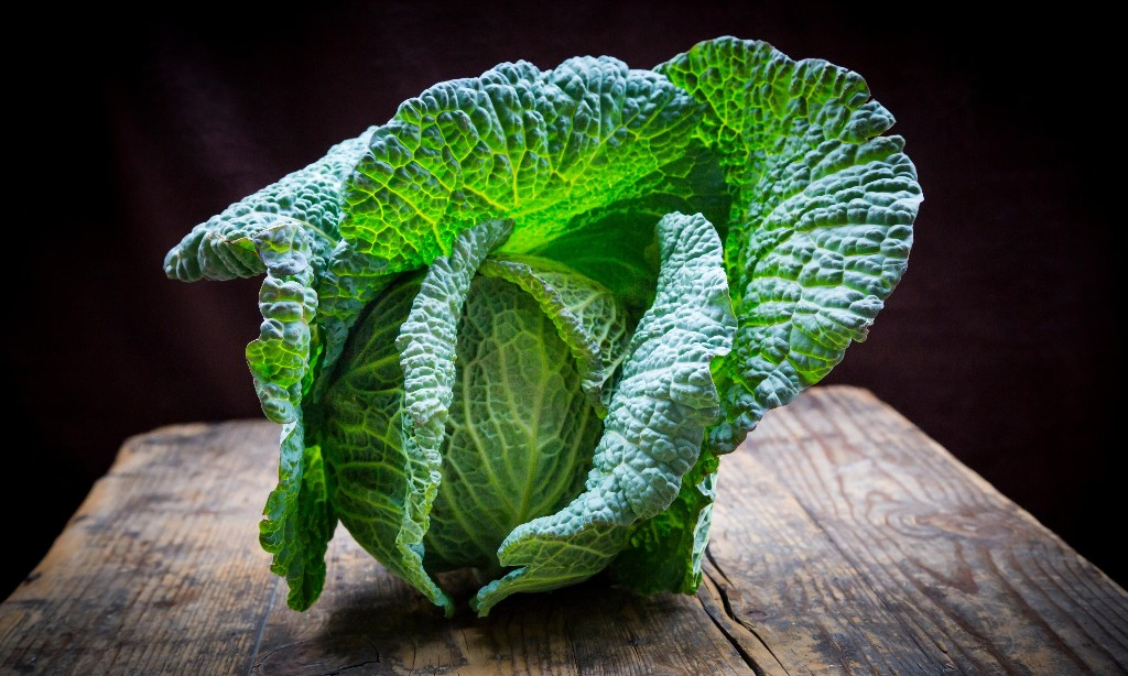 What links cabbages in French and leaf in Greek? The Weekend quiz