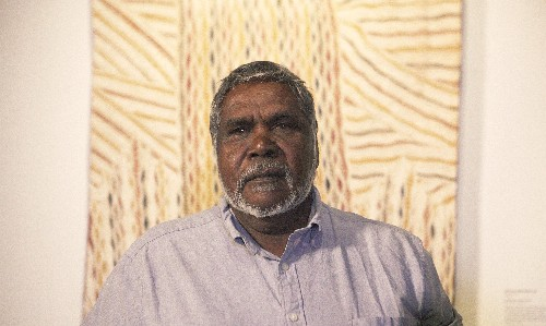 Natsiaa 2019: Djambawa Marawili wins for bark painting 'written in my soul and in my blood'