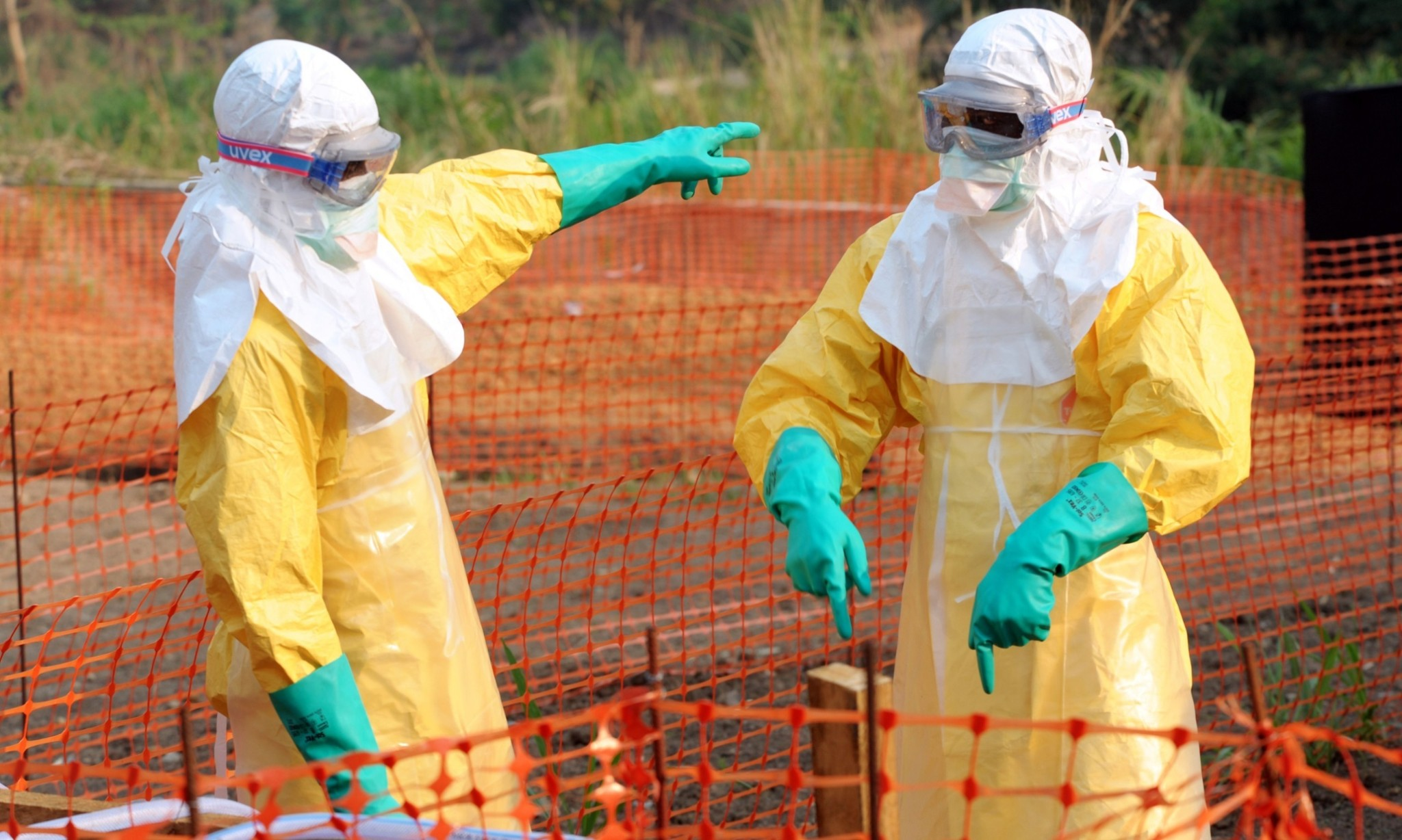 Guinea's Ebola outbreak: what is the virus and what's being done?