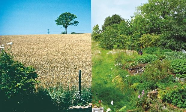 Organic farming, health food production - Magazine cover