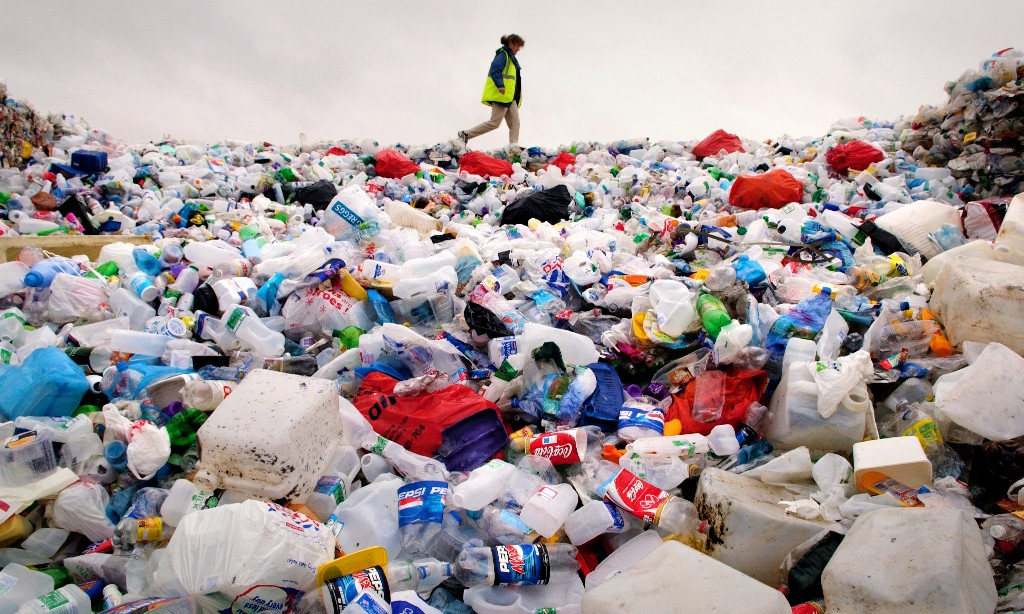 New British standard for biodegradable plastic introduced