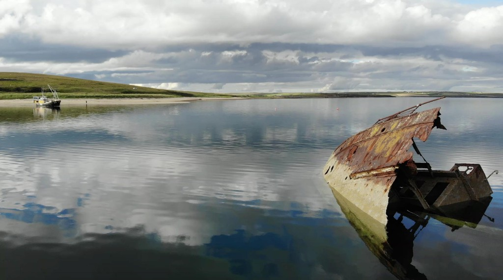 Country diary: life flourishes among the skeletons of scuttled steamships