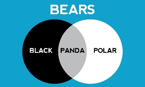 Can you solve it? The enduring appeal of Venn diagrams