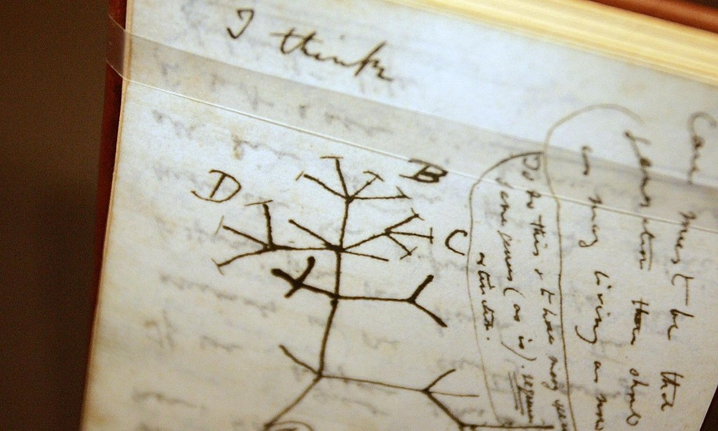 Charles Darwin's notebooks reported stolen from Cambridge University