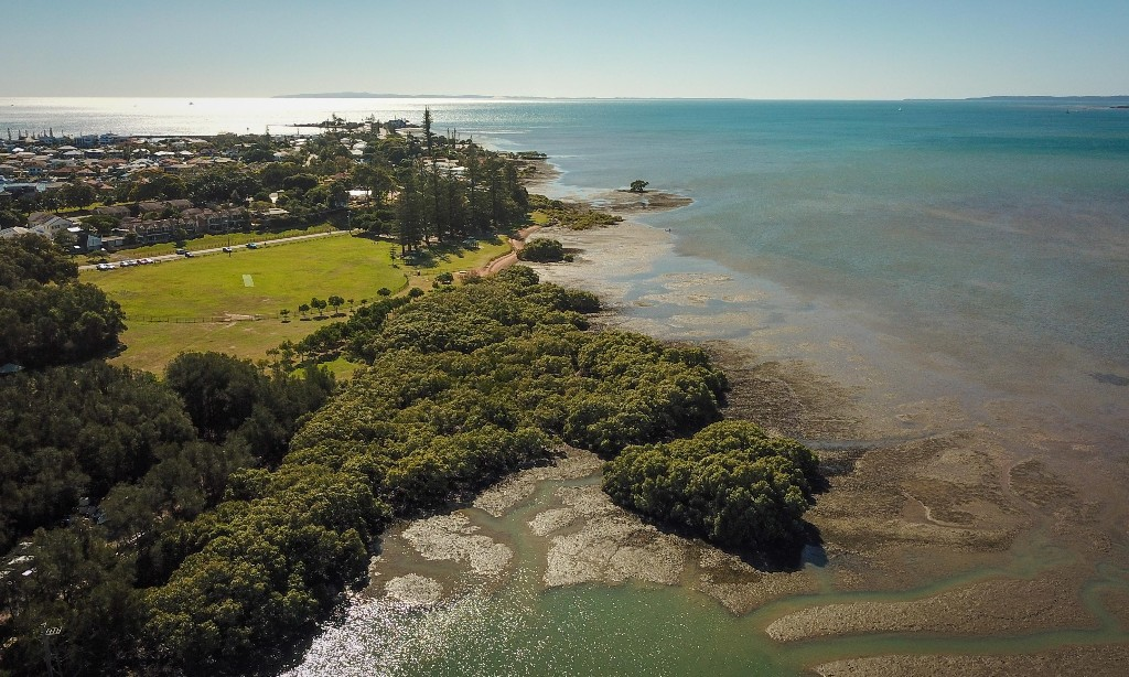 Toondah harbour wetlands: federal government faces legal action over secret details of donor meetings