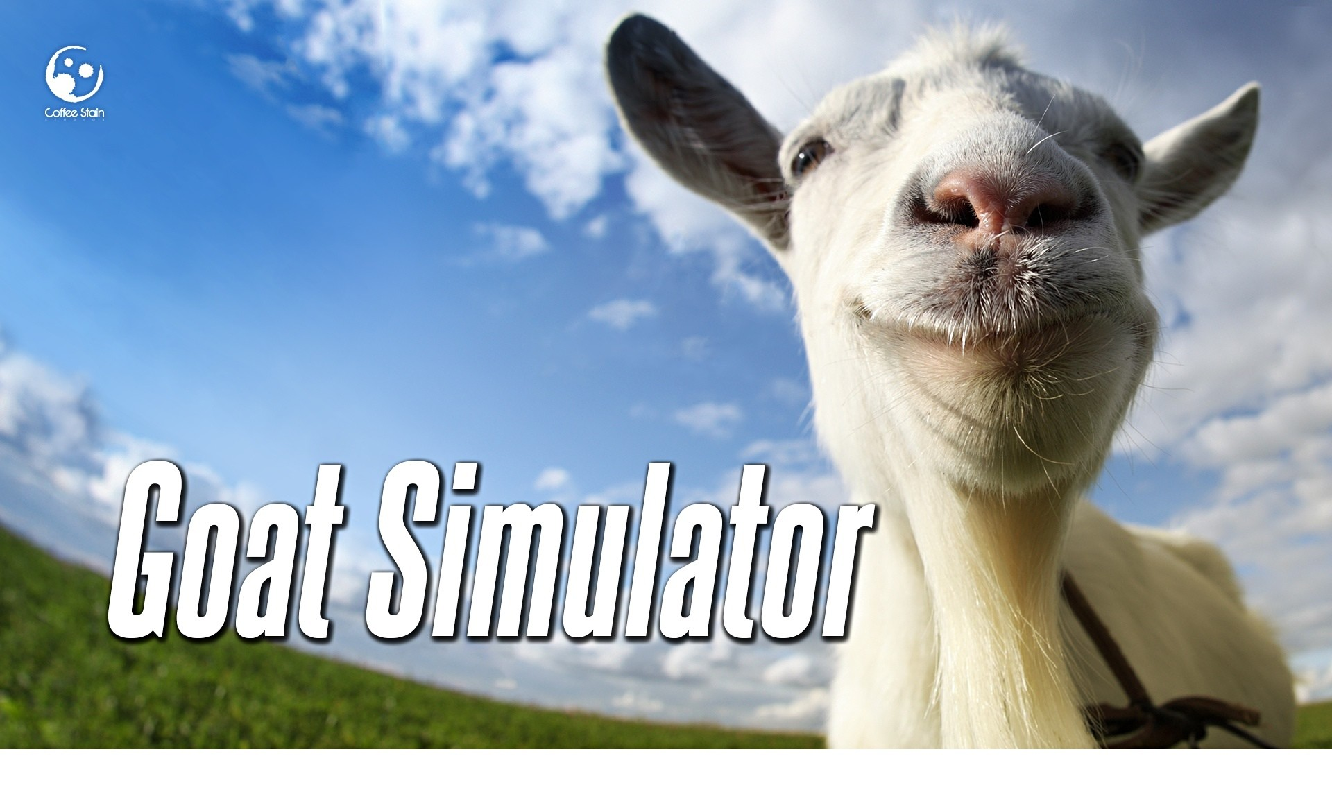 Simulator games, the weird world of ultra-realistic sims