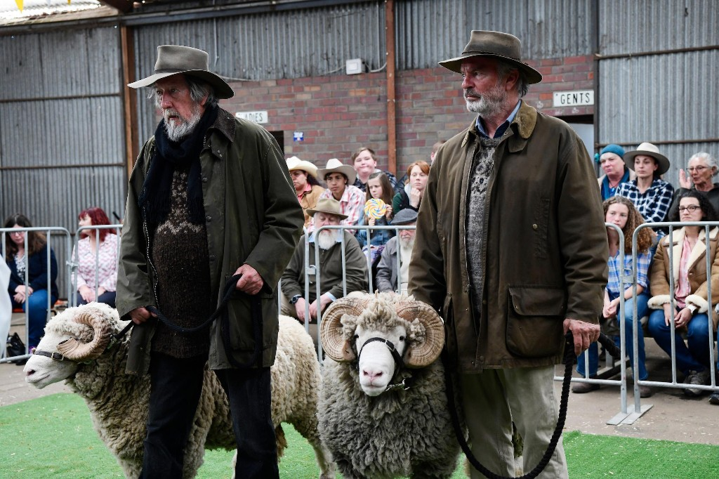 Rams review – Sam Neill and Michael Caton's unpretentious sheep farmers will move ewe