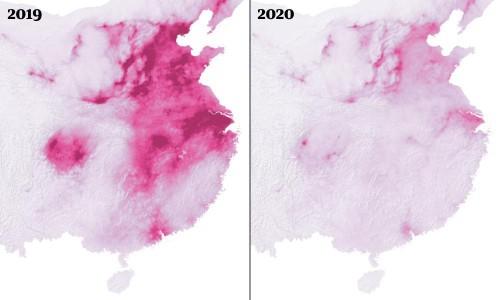 Coronavirus pandemic leading to huge drop in air pollution