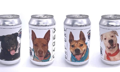 'Huge dog people': brewery puts images of pups in need of homes on beer cans