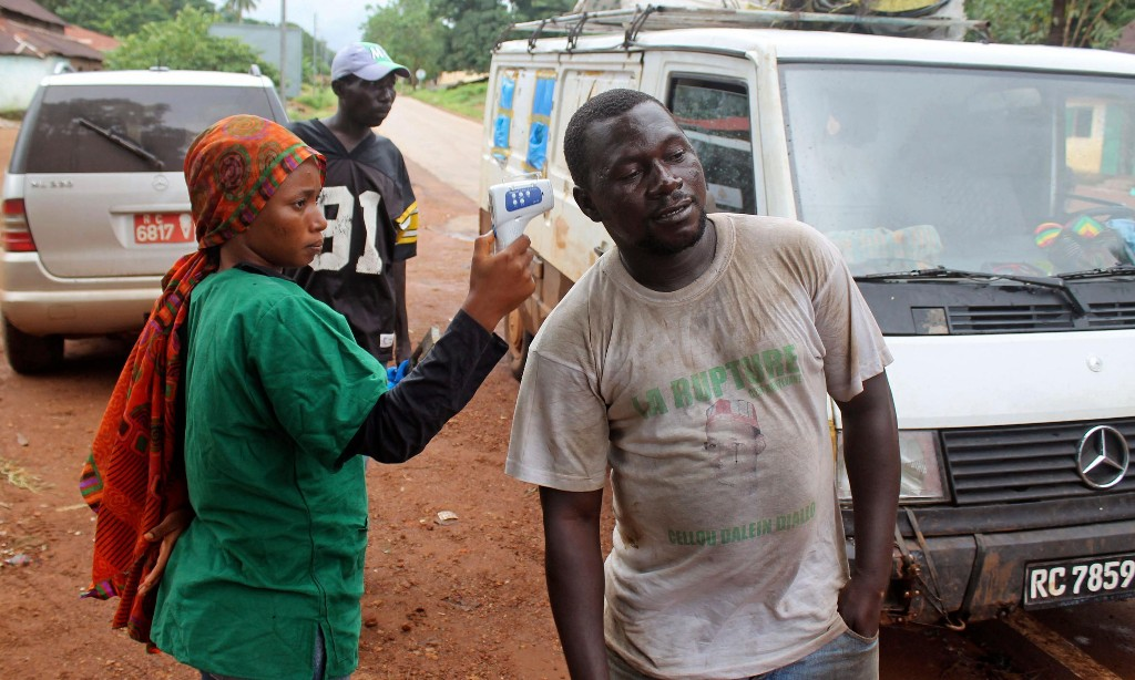 'Killer' cells in Ebola immunity study could help Covid research
