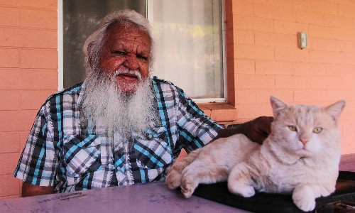 'When will they listen to us?' Town camps on the fringe of Alice, but at the heart of Indigenous debate
