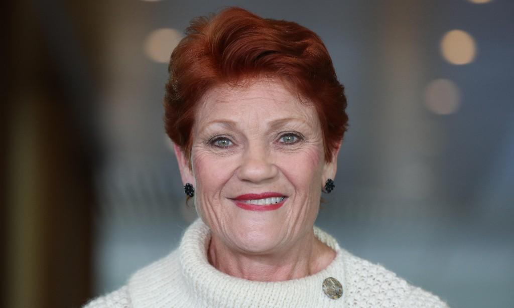 Channel Nine paid for Pauline Hanson's Uluru trip where she made controversial climb