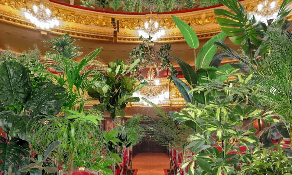 Suites, shoots and leaves: Spanish opera house reopens with concert for plants