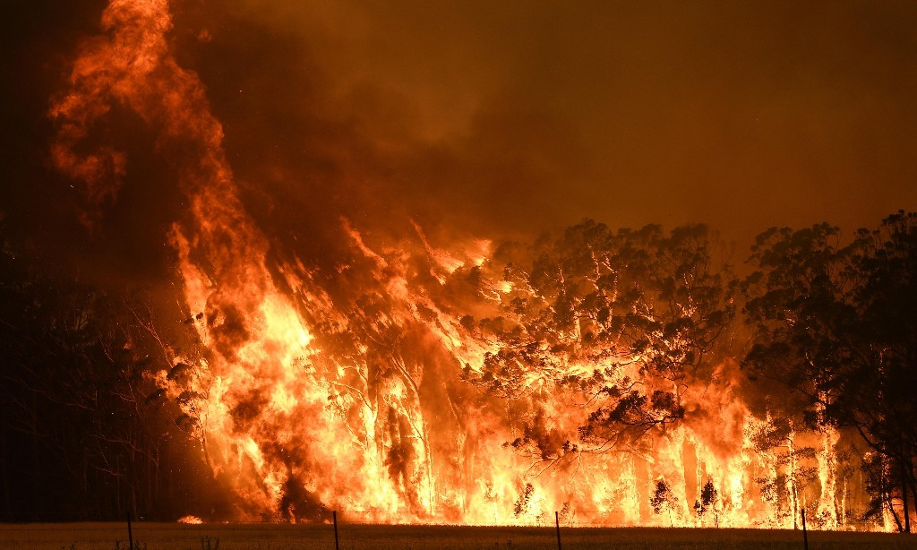Australian bushfires: how the Morrison government failed to heed warnings of catastrophe