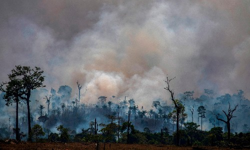 We, the peoples of the Amazon, are full of fear. Soon you will be too
