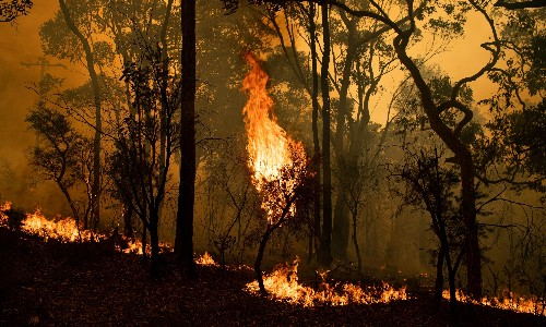 Australia fires: five blazes merge north of Sydney as conditions forecast to worsen