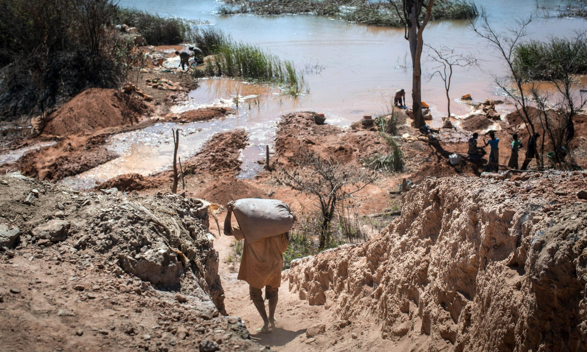 Children as young as seven mining cobalt used in smartphones, says Amnesty