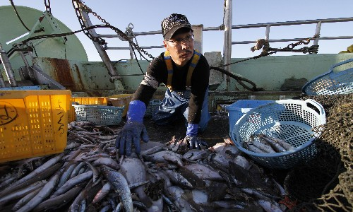 Fukushima fishermen concerned for future over release of radioactive water