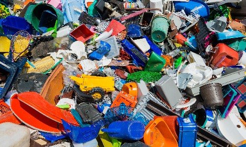 Scientists find bug that feasts on toxic plastic