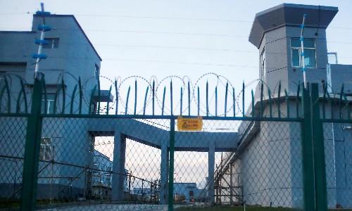'What has happened to me': manga depicting Uighur torture hits 2.5m views