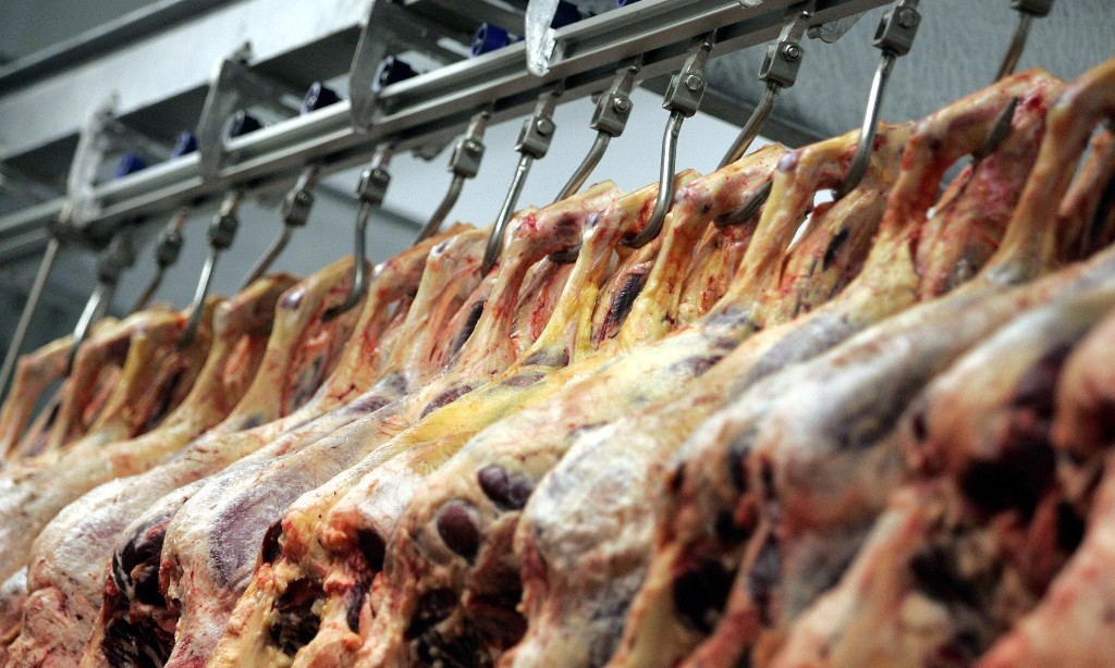Covid cases at UK food factories could be over 30 times higher than reported