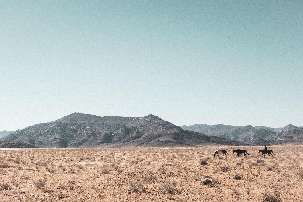 'The beauty of the desert in Namibia took my breath away' Jenny Zarins, photographer
