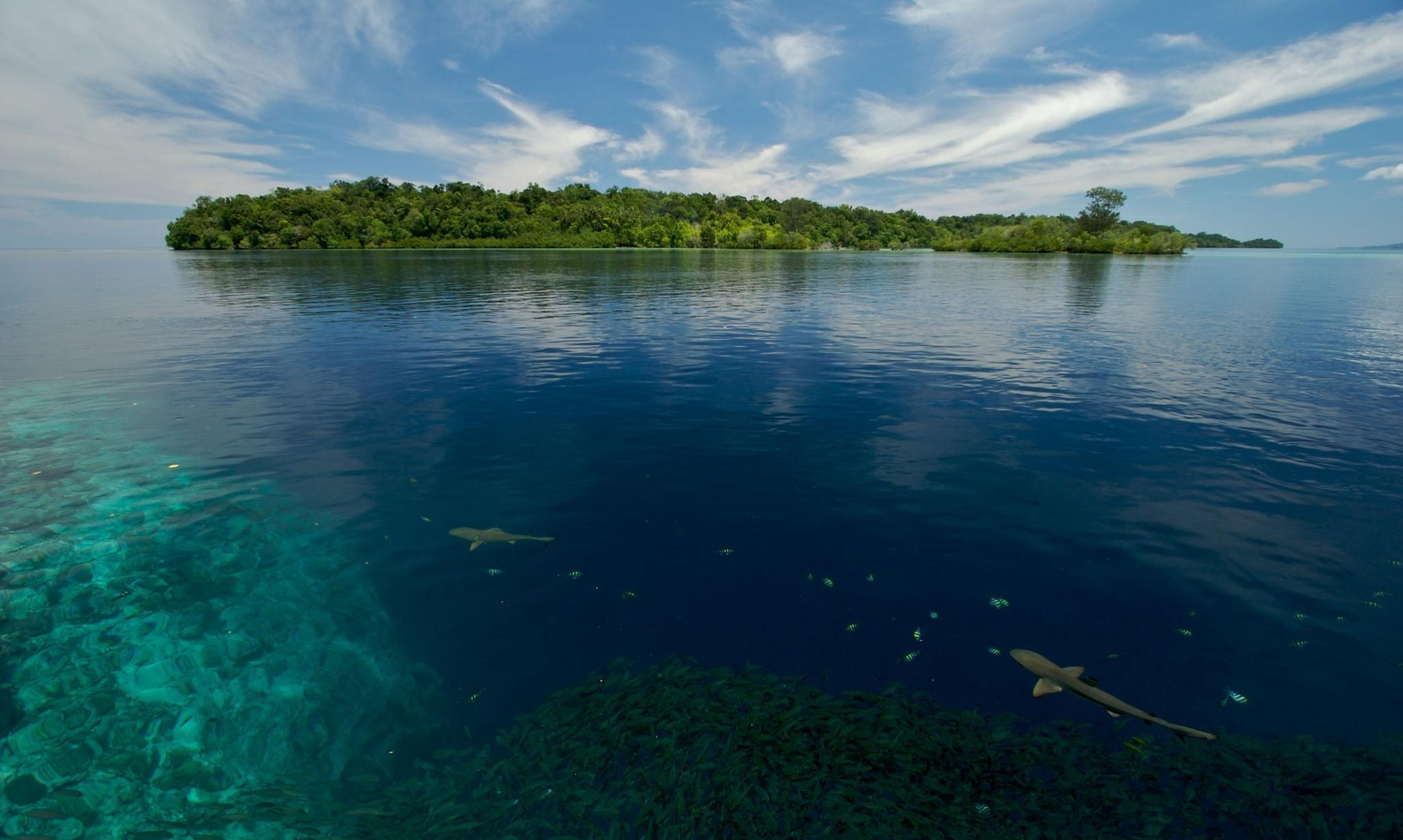 Five Pacific islands lost to rising seas as climate change hits