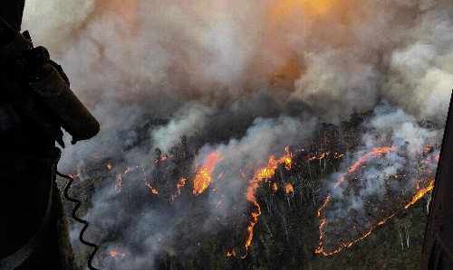 'It's heart-wrenching': 80% of Blue Mountains and 50% of Gondwana rainforests burn in bushfires