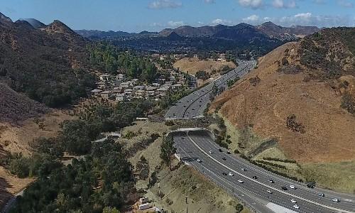 Los Angeles to build world's largest wildlife bridge across 10-lane freeway