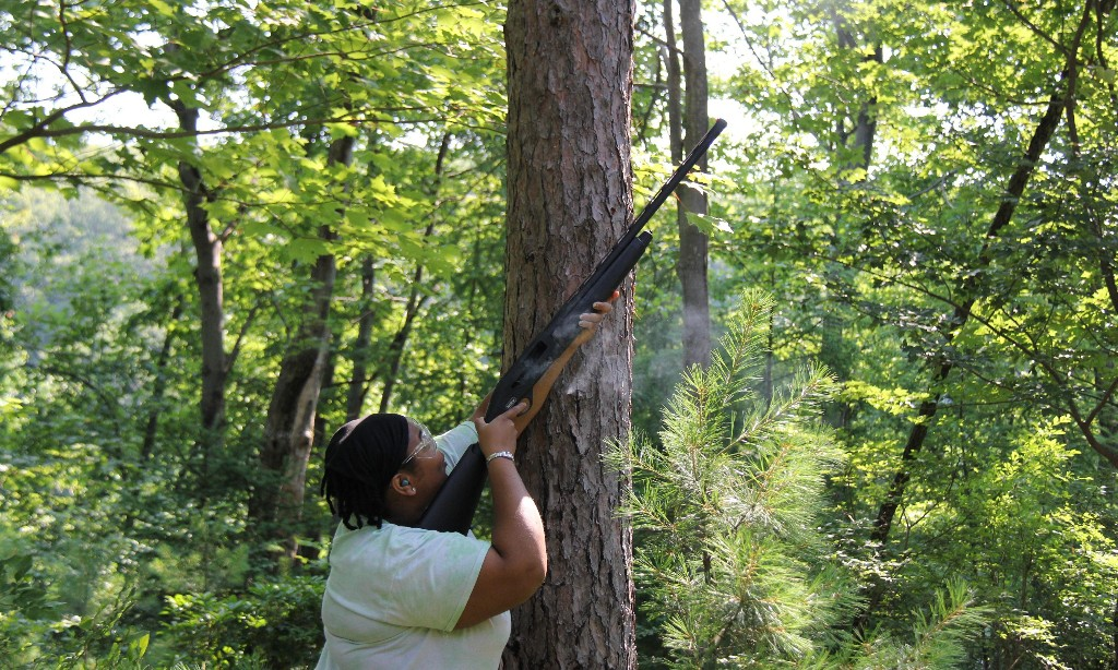 Shoots and leaves: the shotgun scientist who hunts moving trees