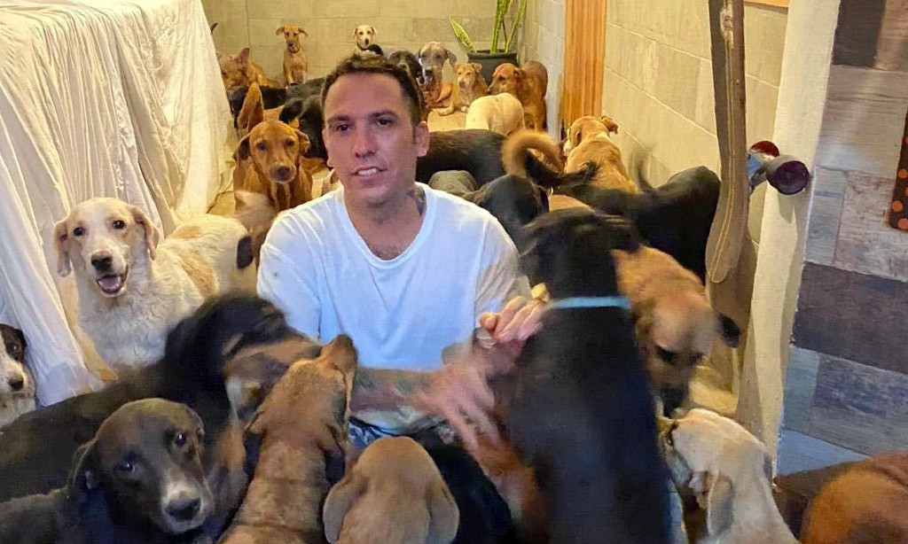 Ricardo's ark: Mexican man opens his home to 300 dogs in path of hurricane