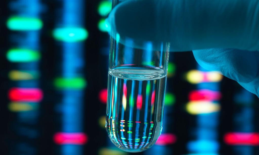 Scientists quash idea of single 'gay gene'