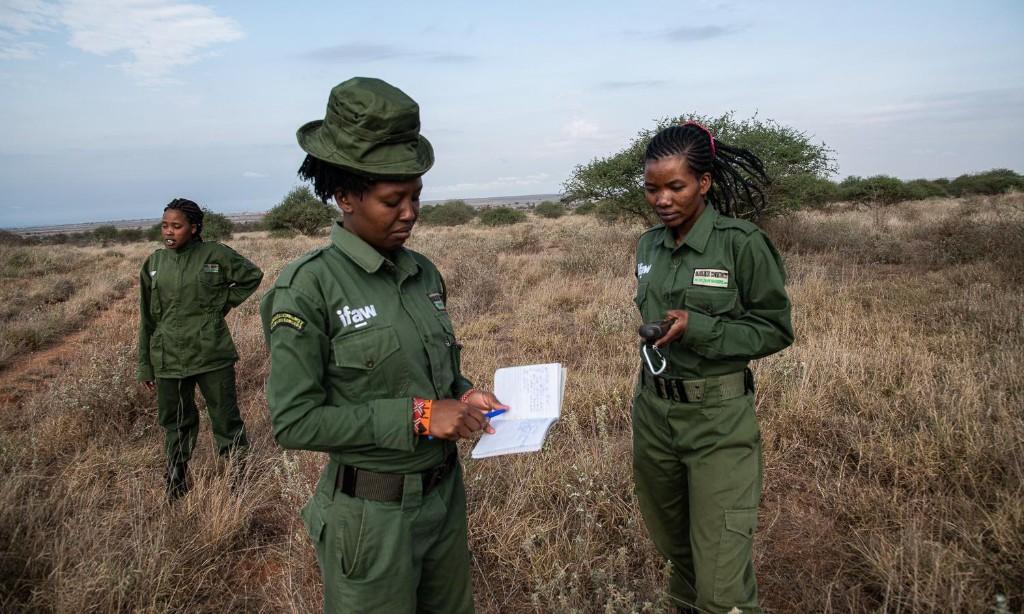 Team Lioness: the Kenyan women rangers risking their lives for wildlife