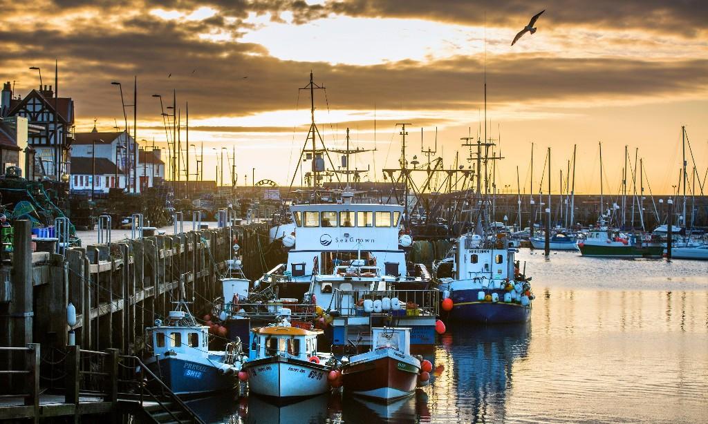 Fishermen face bleak year as pandemic bites