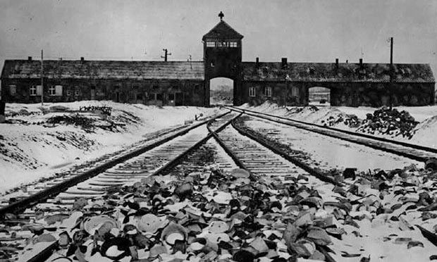 Tales from Auschwitz: survivor stories