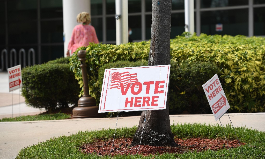 International body says voting problems 'could harm integrity' of US election