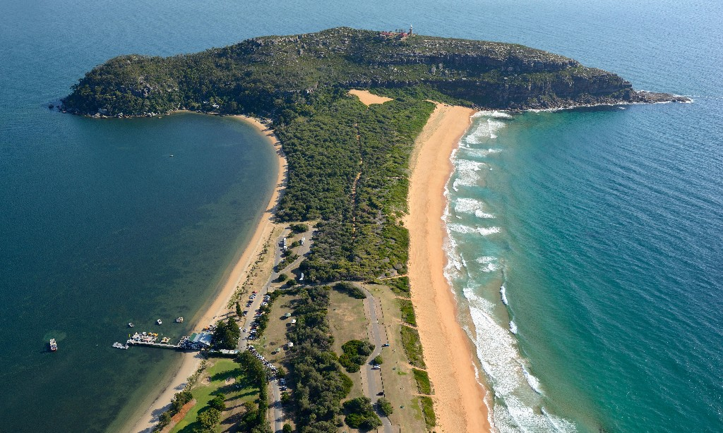 Liberal MPs call for government to deny permit renewal that would allow drilling off NSW coastline