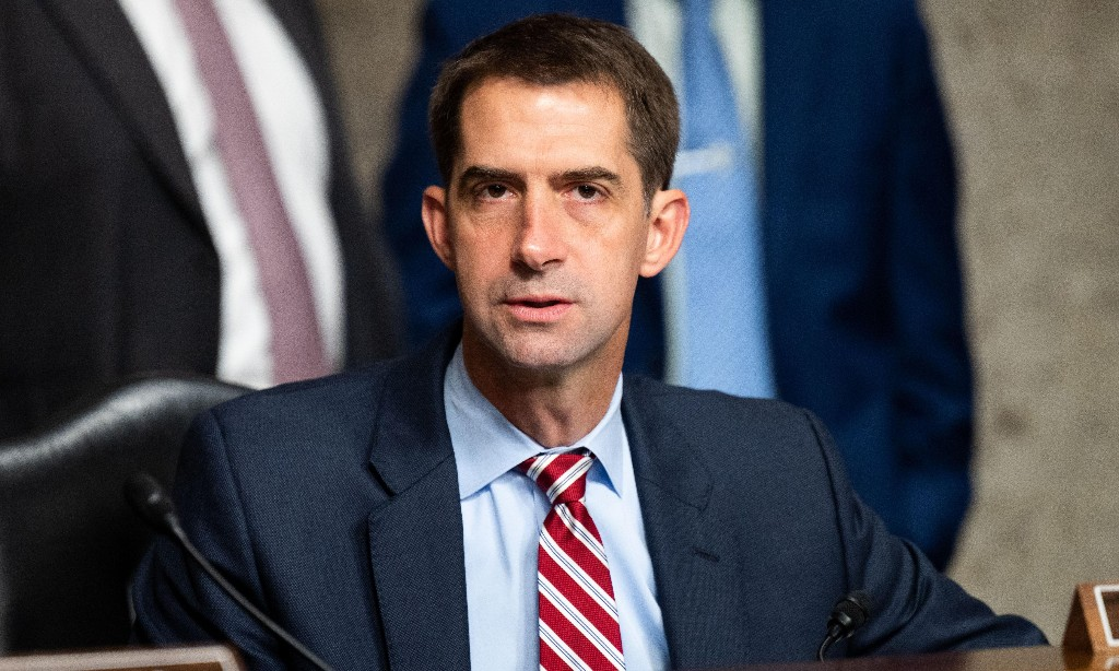Tom Cotton: Democrats 'rioting in the streets' as supreme court battle heats up