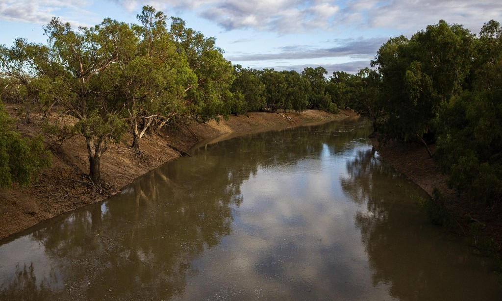 ACCC proposes federal takeover of Murray-Darling Basin water markets